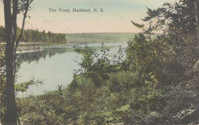 The Pond, Maitland, N.S.