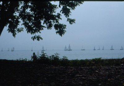 Sailboats on Lake Ontario. Courtesy of the Town of Oakville