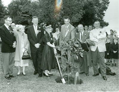 Planting of Centennial Oak