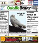 Oakville Beaver4 Dec 2014