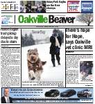 Oakville Beaver5 Feb 2015