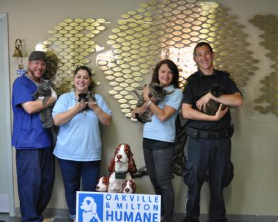 Caring staff of the Oakville & Milton Humane Society