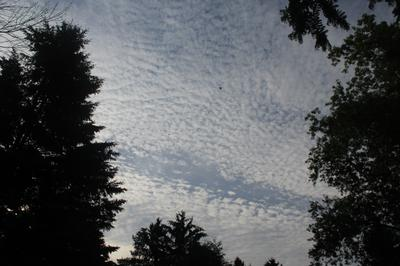 A rippled sky sometimes is dry