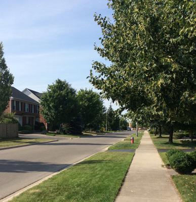 Beautiful Doverwood Drive in River Oaks