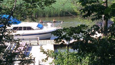 Kayaking up the creek