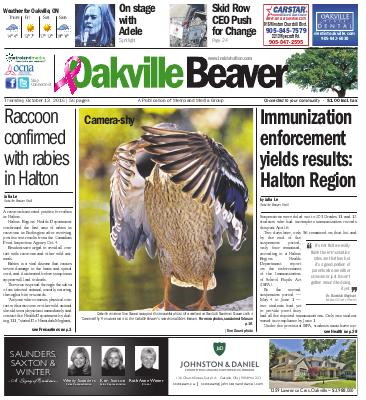 Oakville Beaver, 13 Oct 2016
