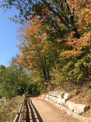 Saturday walk by 16 Mile Creek.