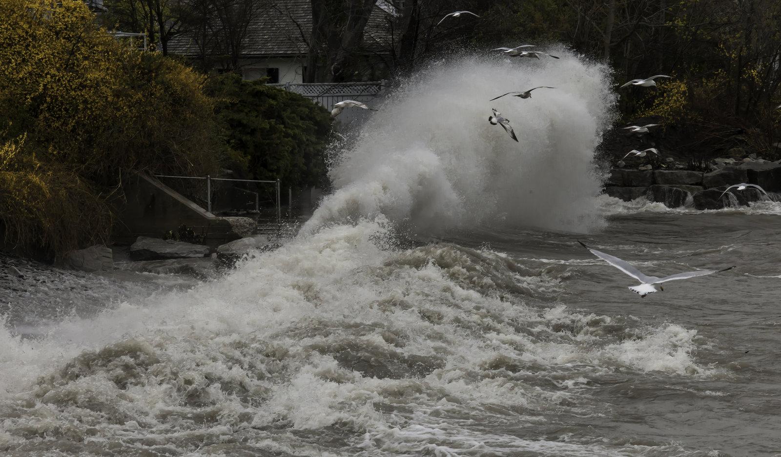 Oakville Heavy Surf at George Street