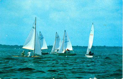 Oakville Harbour Yachts Postcard