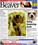 Oakville Beaver26 Aug 2009