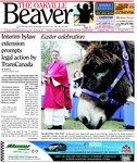 Oakville Beaver1 Apr 2010