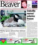 Oakville Beaver16 Apr 2010