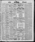 Ottawa Times (1865), 13 Mar 1866