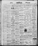 Ottawa Times (1865), 22 Nov 1867