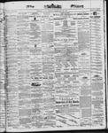 Ottawa Times (1865), 13 Dec 1867