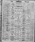 Ottawa Times (1865), 1 Feb 1868