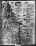 Ottawa Times (1865), 4 Jun 1872
