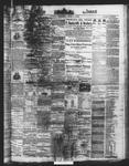 Ottawa Times (1865), 8 Jun 1872