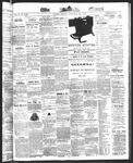 Ottawa Times (1865), 22 Nov 1872