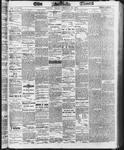 Ottawa Times (1865), 28 Feb 1873