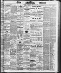 Ottawa Times (1865), 8 Mar 1873