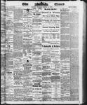 Ottawa Times (1865), 11 Mar 1873