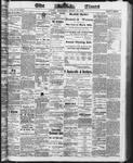 Ottawa Times (1865), 12 Mar 1873