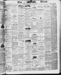 Ottawa Times (1865), 20 Aug 1873