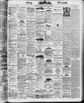 Ottawa Times (1865), 26 Aug 1873