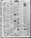 Ottawa Times (1865), 2 Sep 1873