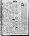 Ottawa Times (1865), 8 Sep 1873