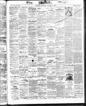 Ottawa Times (1865), 4 Oct 1873