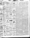 Ottawa Times (1865), 29 Oct 1873