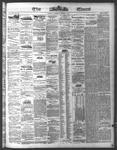 Ottawa Times (1865), 3 Mar 1874