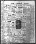 Ottawa Times (1865), 19 May 1874