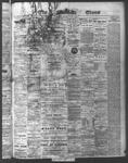 Ottawa Times (1865), 6 Jul 1874