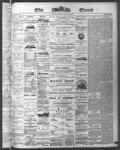 Ottawa Times (1865), 11 Aug 1874