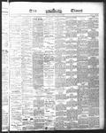Ottawa Times (1865), 17 May 1875