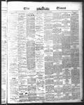 Ottawa Times (1865), 18 May 1875