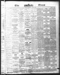 Ottawa Times (1865), 3 Jun 1875