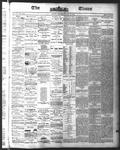 Ottawa Times (1865), 8 Jul 1875