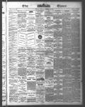 Ottawa Times (1865), 10 Oct 1876