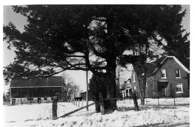 Hazel and Warren Reaman's farmhouse and barn