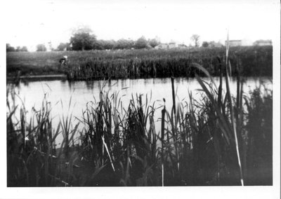 Fields and pond behind the Routledge Blacksmith Shop