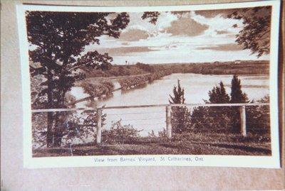 View from Barnes Vineyard