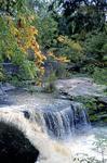 Rockway Falls