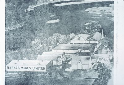 Barnes Wines Limited