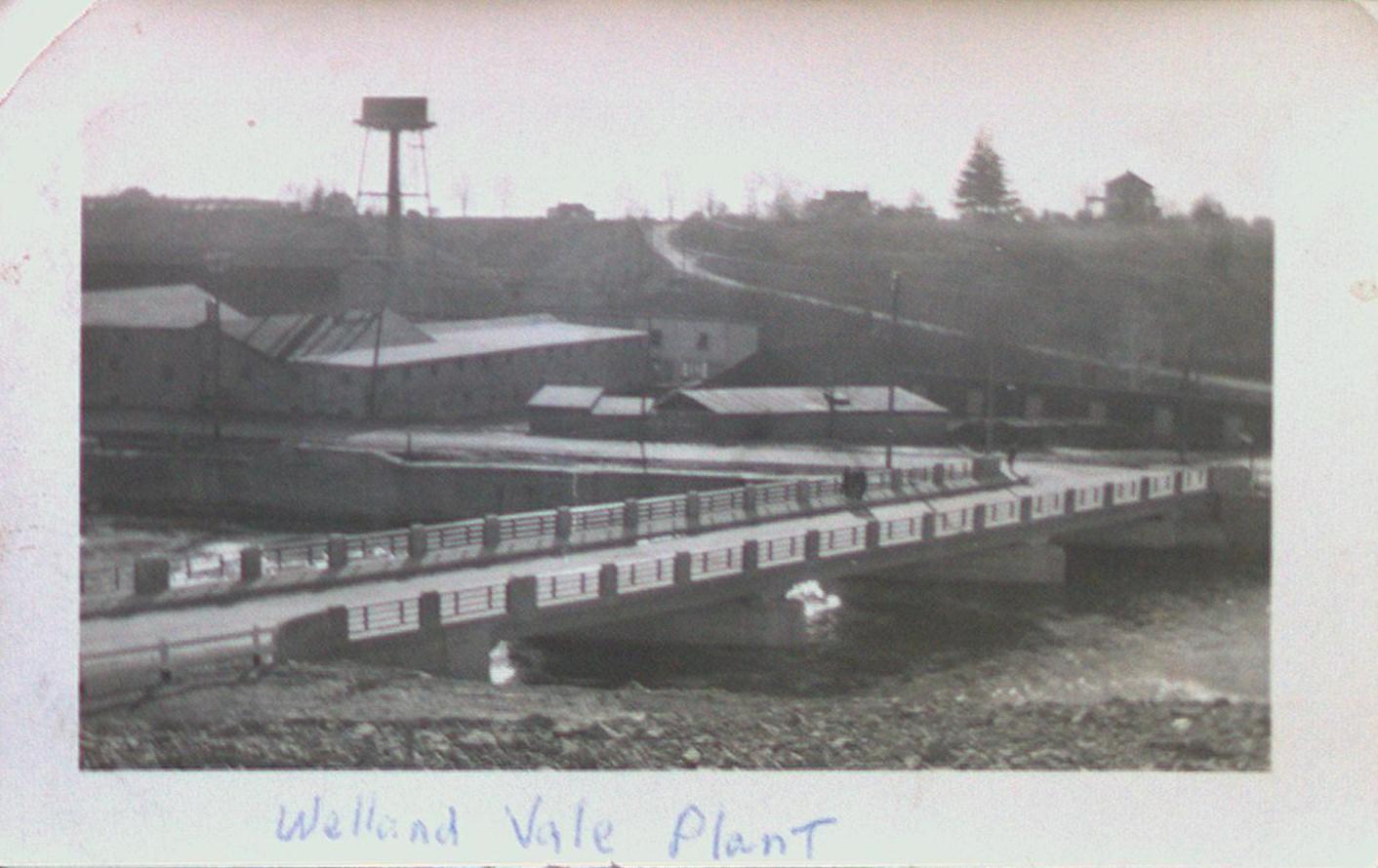 Welland Vale Plant