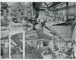 Photographs of the Summit House