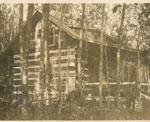 Scroggie Cottage
